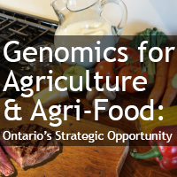 Genomics strategy for Ontario's Ag/Agri-Food sector