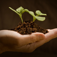 Enhancing naturally-occurring nutrition in soil