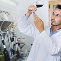 Breakthrough paves way for wine grape varieties