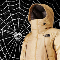 Fashionable synthetic biology: The North Face's 'Moon Parka' spun from faux spider silk
