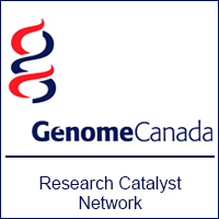 Funding opportunity: Research Catalyst Network to expedite collaboration between basic and clinician scientists in functional studies of novel rare disease genes
