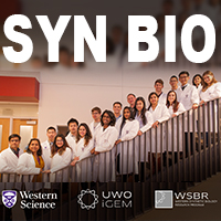 SynBio is booming at Western University