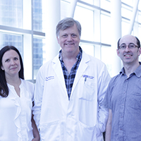 Revealing the molecular mystery of human liver cells